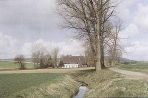 GeschichteNeuhof2